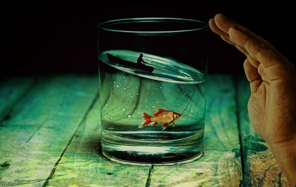 Why Content Marketing is Like Fishing